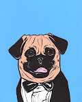 Pug tuxedo