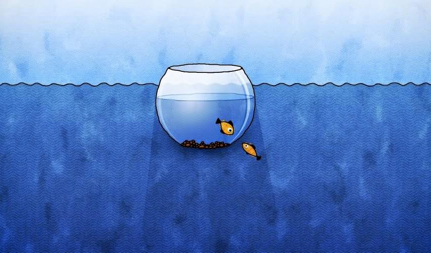 peces en pecera y mar
