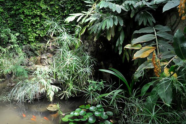 MADRID CON NIÑOS; El Jardin Botánico