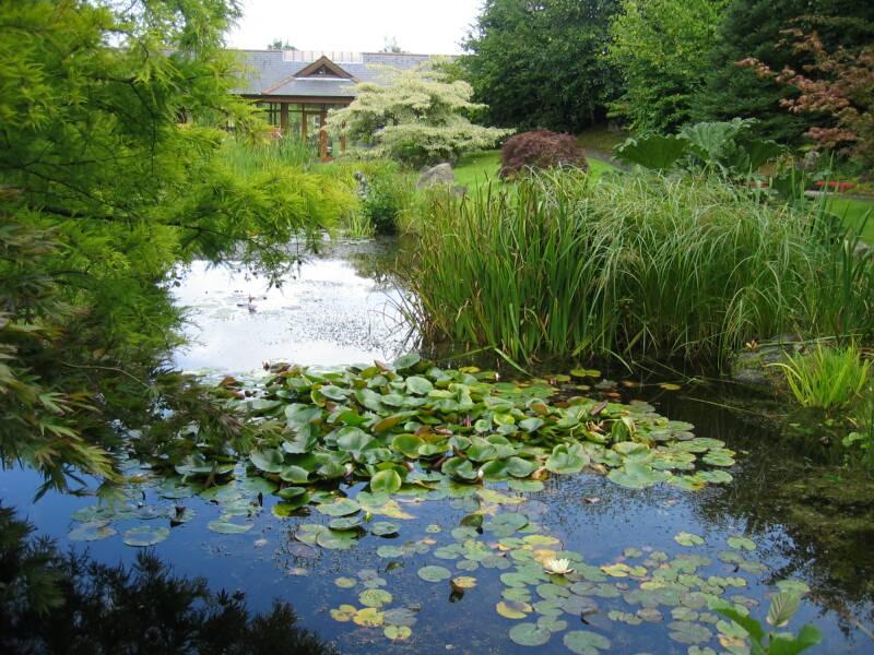 il giardino delle naiadi un laghetto naturale