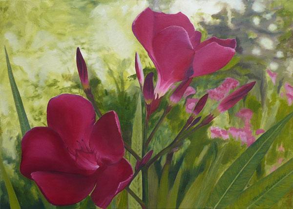 41-pintura-flores-oleo.jpg
