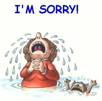 chentamarissa im sorry so sorry