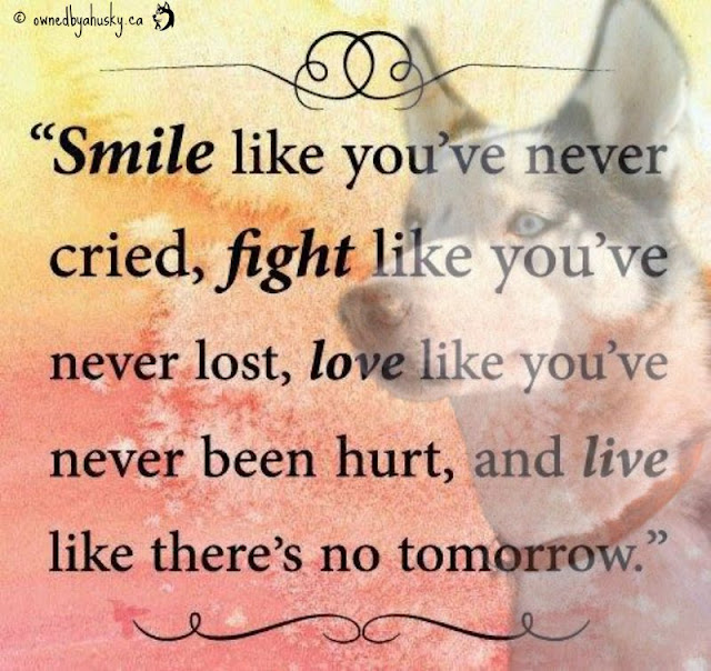 Smile Like You've Never Cried Quote