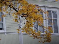 Nu närmar sig hösten