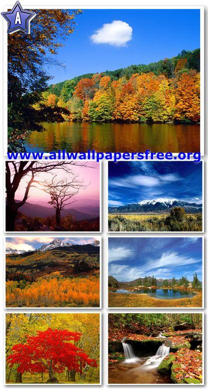 200 Beautiful Autumn Wallpapers 1600 X 1200