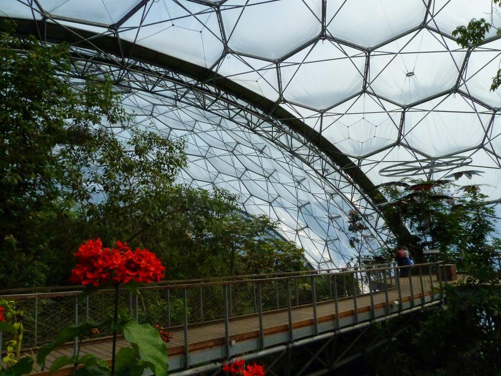 Eden Canopy Walkway