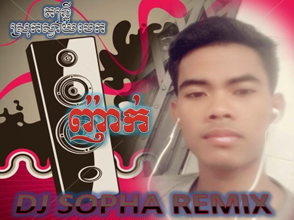 DJ Sopha Remix Vol 08