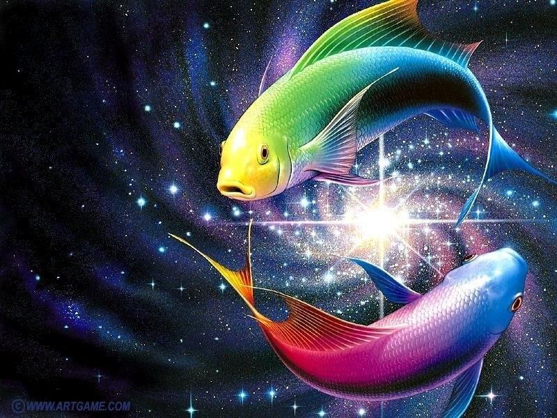 на 2013 год рыба: