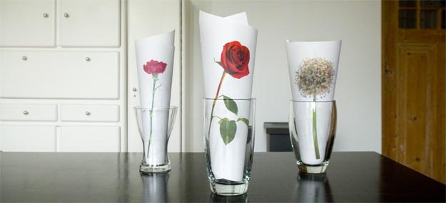 Decoracion Jarrones De Cristal ~   jarrones de cristal No huelen, pero a falta de flores naturales son