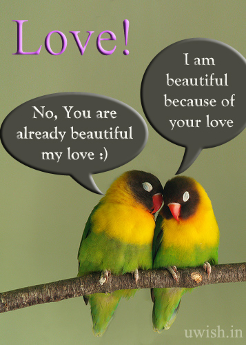 Love conversation of two lovely birds. I am beautiful because of your love. Beautiful Love wishes and greetings.