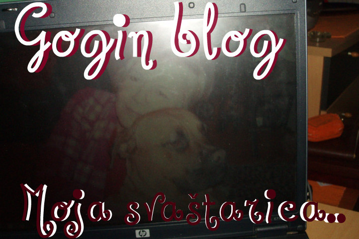 Gogin blog