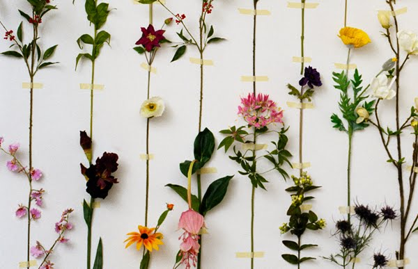 Fiori wallpaper by front design idee fiorite for Inexpensive wallpaper