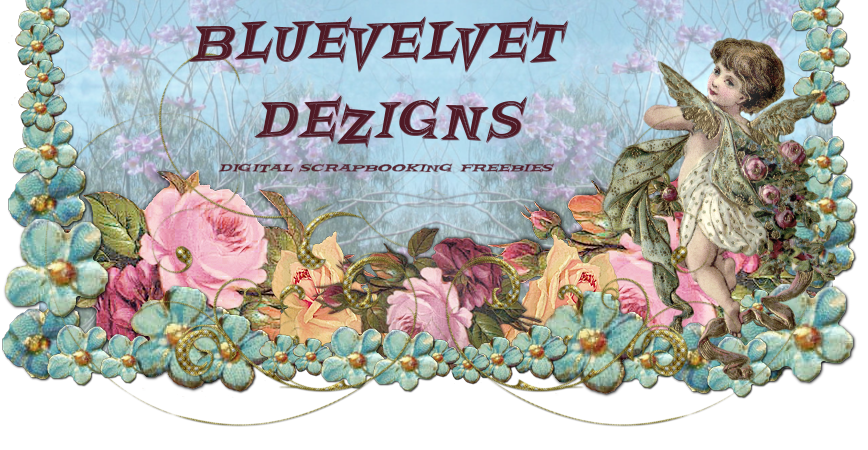 BLUEVELVET DEZIGNS