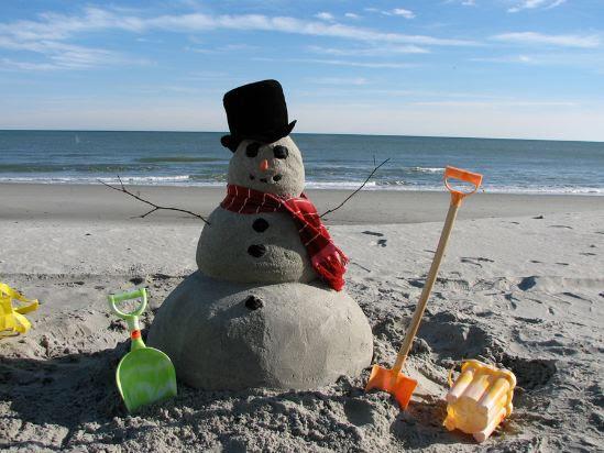 Happy Holidays from Florida!