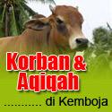 eQurban.com - Program Korban dan Aqiqah di Kemboja
