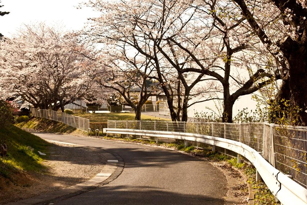 Narita san