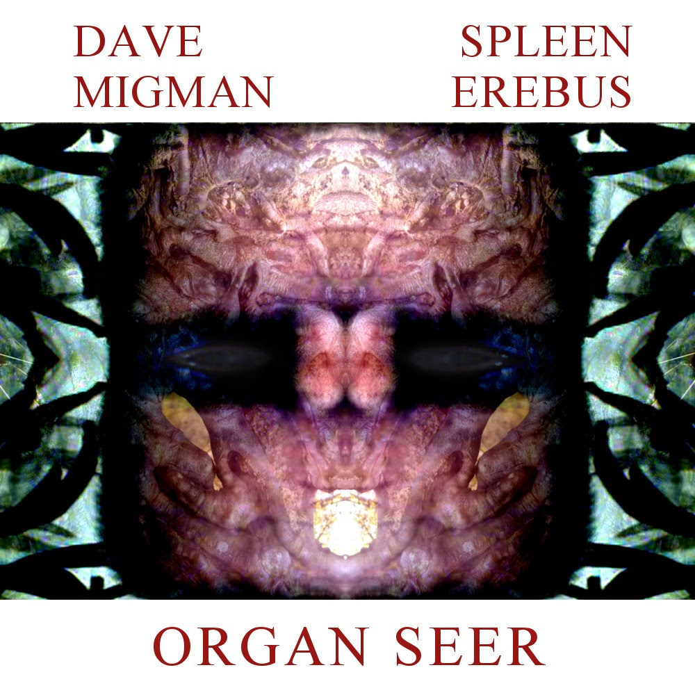 Dave Migman and Spleen Erebus - Organ Seer