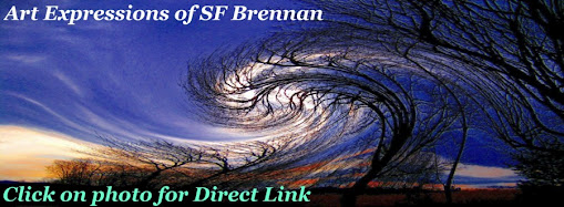 Art & Expressions of SF Brennan
