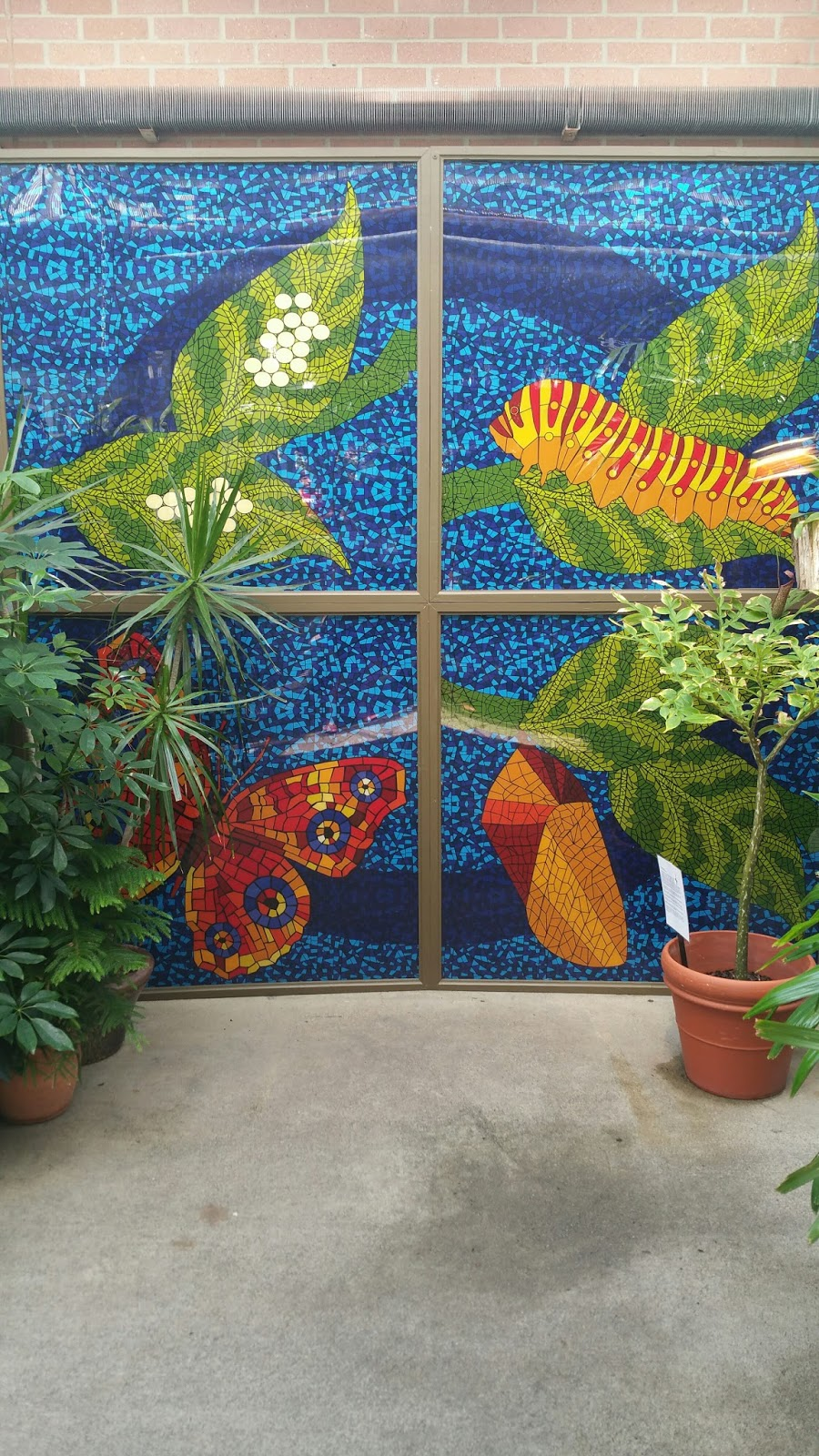 A home for elegance the butterfly garden for Butterfly garden mural