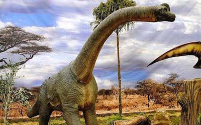 Spesies Baru Dinosaurus Raksasa Ditemukan