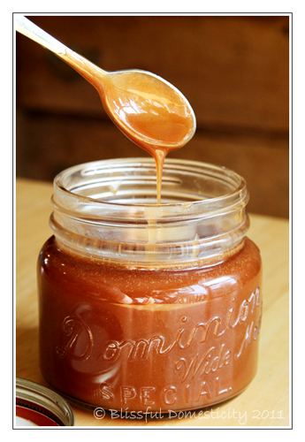 My Favorite Things: Simple Salted Caramel Sauce from Blissful ...