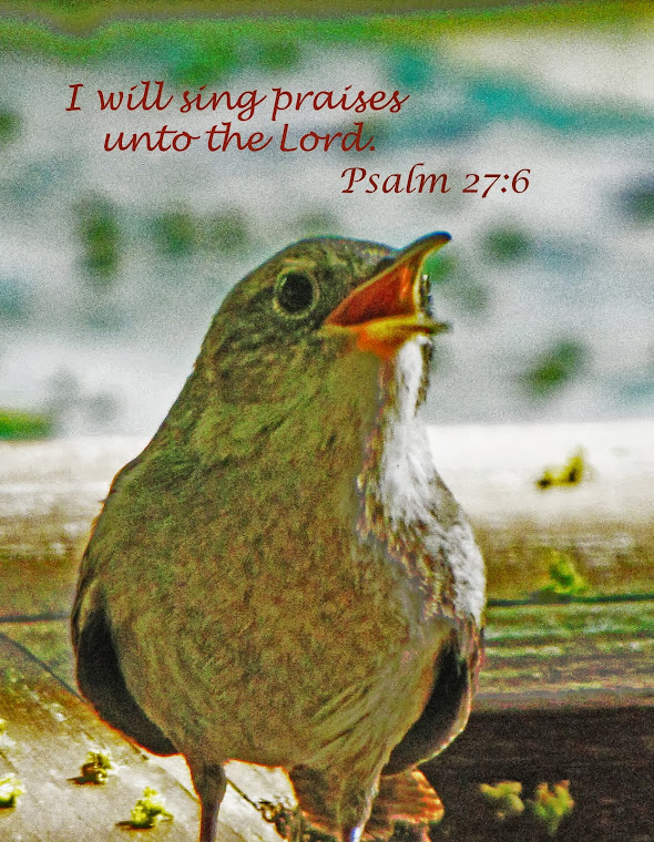 Singing Wren - Psalm 27:6