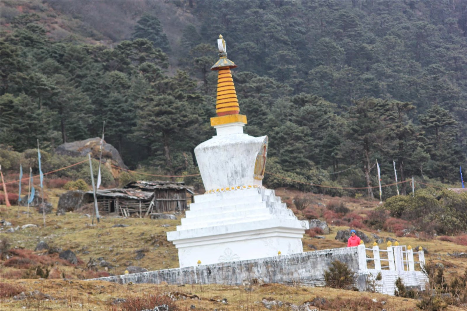 Yumthang Valley Gompa