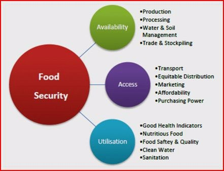 Food insecurity causes