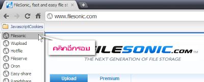 2011 06 12 062652 Free WUpload & FileSonic Premium Account