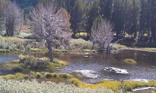 Lamoille Canyon - Dollar Lake