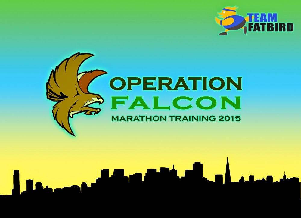 Operation Falcon 2015: The Power Training Is Back!