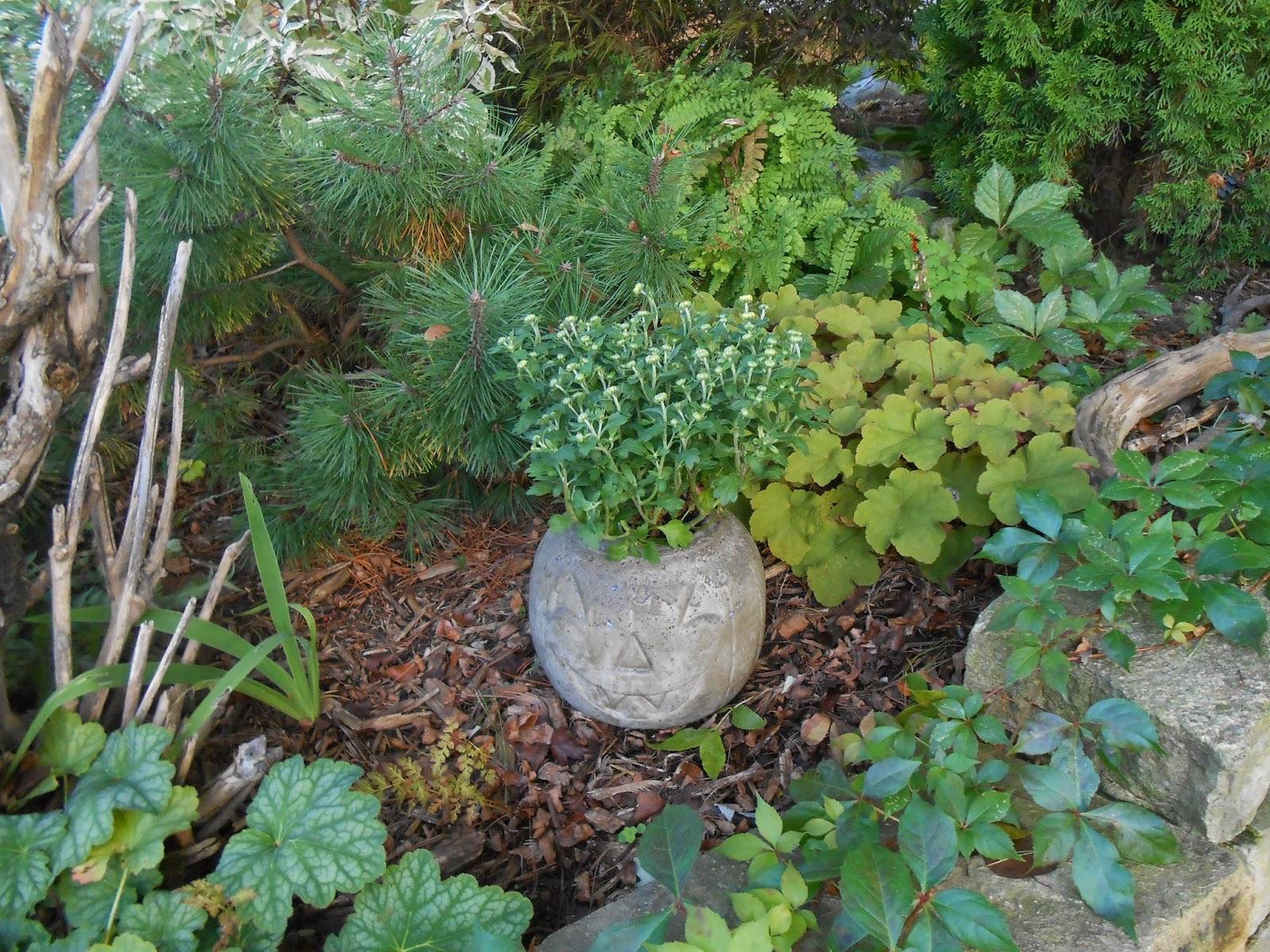 Cheap Ground Cover Good Garden Design Garden Design With