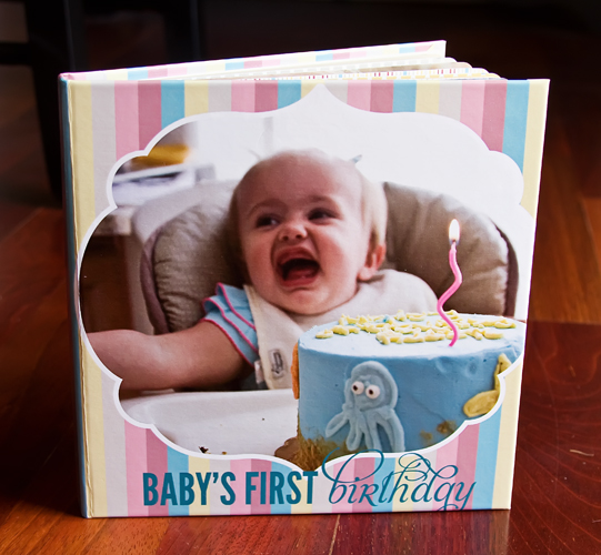 Baby's 1st Birthday Board Book Album