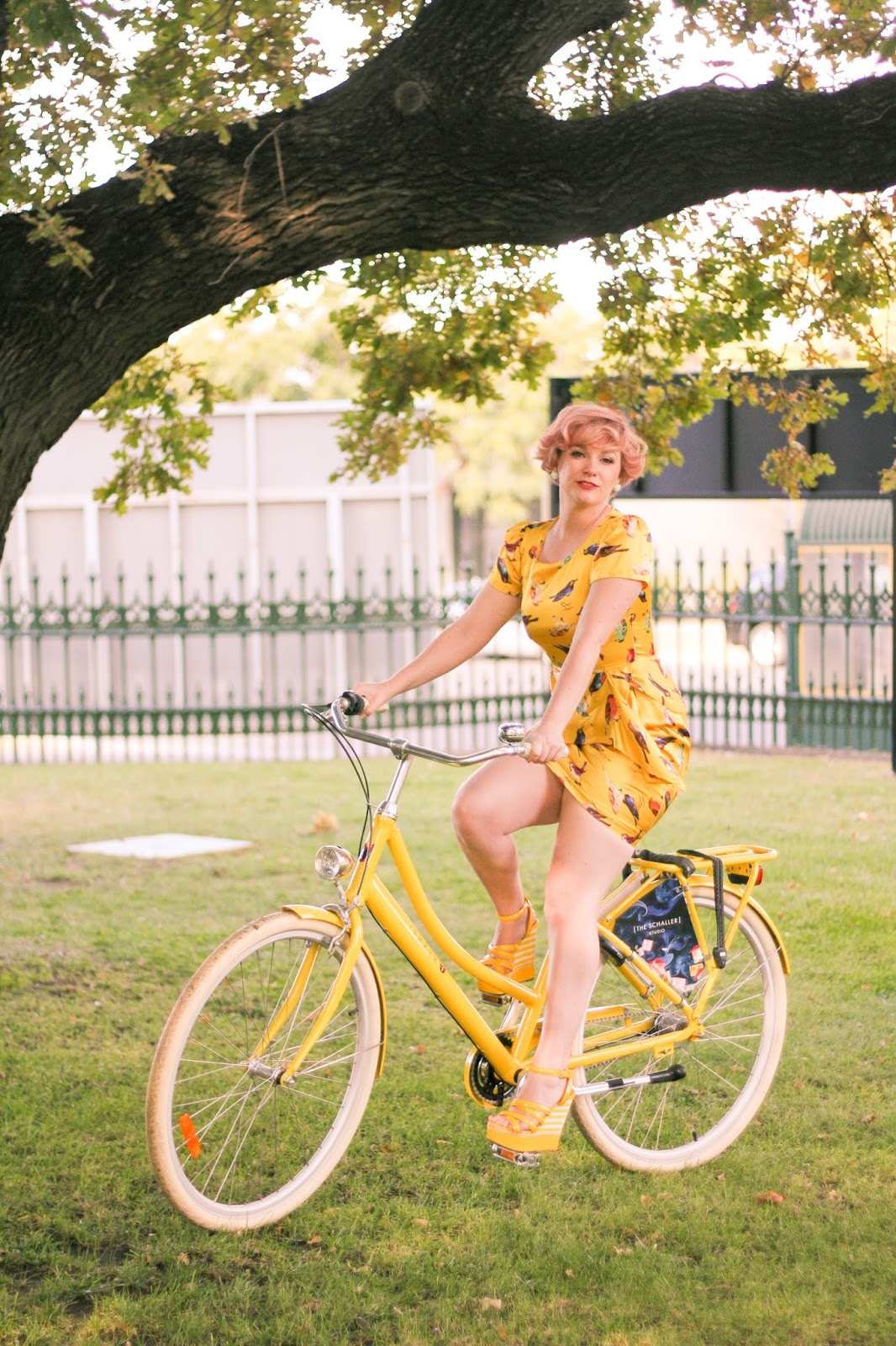 Finding Femme wearing yellow bird print Alannah Hill dress, riding a yellow Lekker Jordaan bike at Schaller Studio in Bendigo