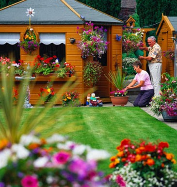 Pilos construcciones - Plantas para jardineras al sol ...