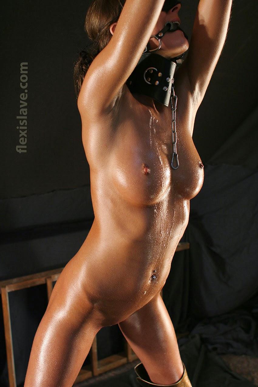 Oiled Bondage Tube Search 640 videos - NudeVista