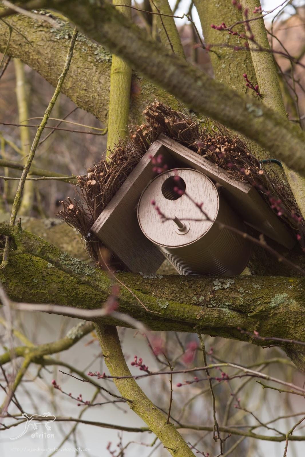 Le jardin de triton nichoir improvis - Grosse boite de conserve ...