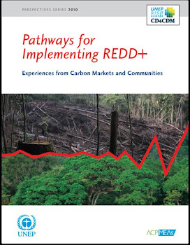 """The 'Nested Approach' to REDD+: How Could it Be Implemented?"""