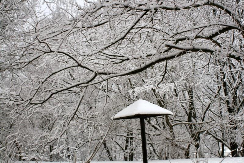 beautiful snowy wonderland Lithuania