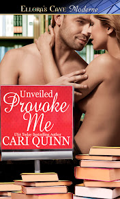 Provoke Me, Unveiled Book 2