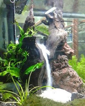 Cara Membuat Air Terjun Pasir di Aquarium dengan Aerator ...