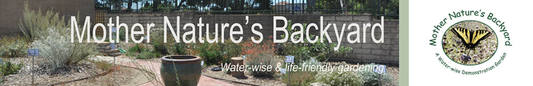 Mother Nature&#39;s Backyard - A Water-wise Garden