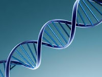 CRIMINAL DEFENSE AND DNA CASES