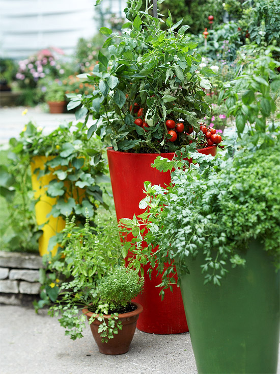 Growing Vegetables In Containers Stagger Height