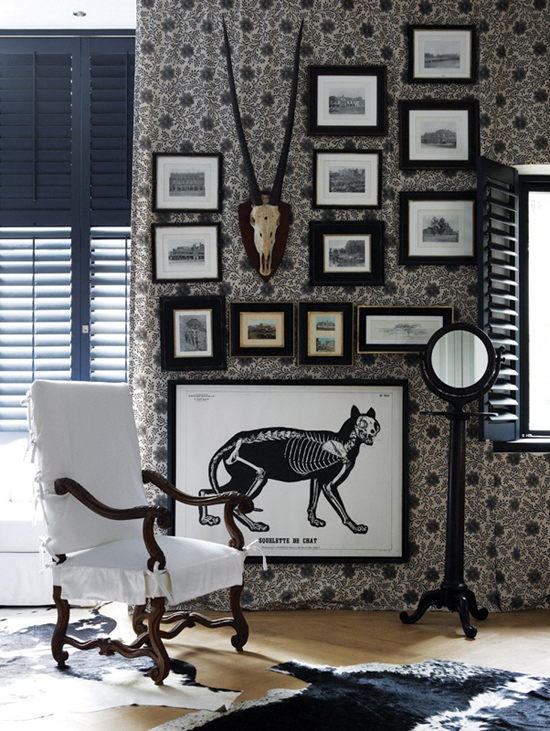 Safari Fusion blog | Skull & skeleton | A formal monochrome picture wall with a distinctive Africa feel