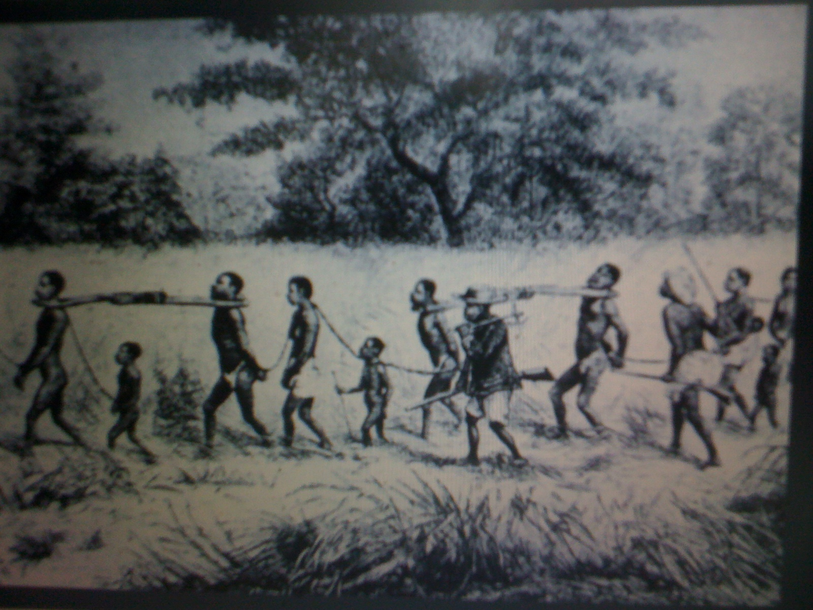 history ia on slavery World history research papers topics ranging from world wars to an individual country's history, paper masters helps write great college research papers in world history.