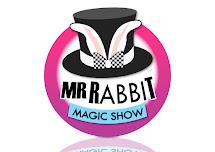 Hire a Magician?