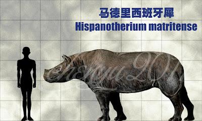Hispanotherium