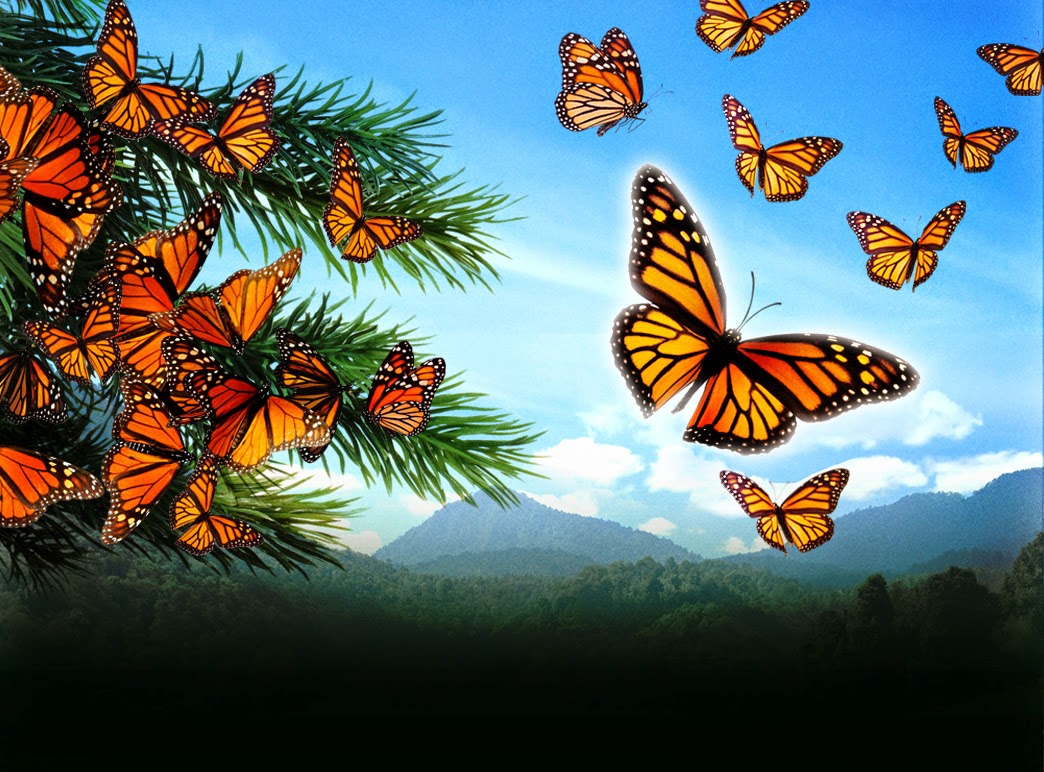 butterflies, compassion, courage, depression, endure, God, hope, kindness, life, love