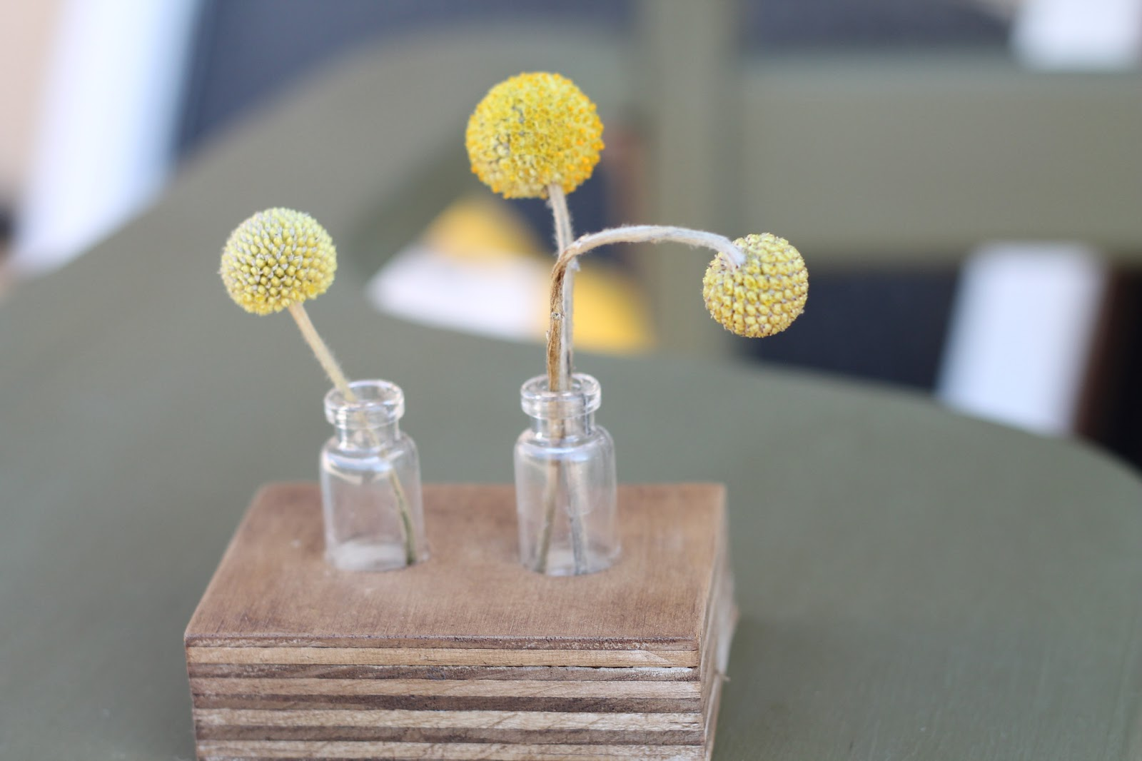 Walrus reclaimed wood bud vase holder we create these bud vase holders from reclaimed wood and tiny vintage glass bottles no two are alike but they are a beautiful way to display a small reviewsmspy